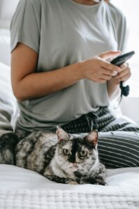 Tierarztbesuch online