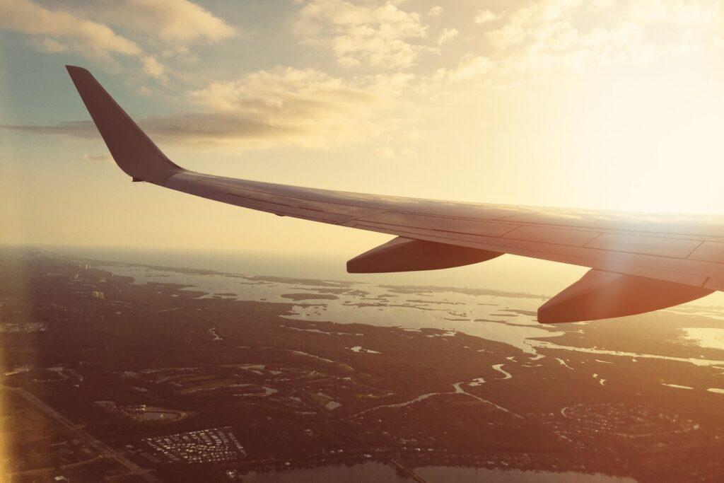 Reisen mit Katze - Flugzeug
