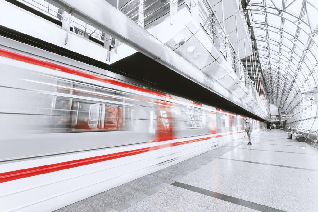 Reisen mit Katze im Zug?